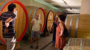 Il Chiosso Gattinara - Cantina Vini Alto Piemonte